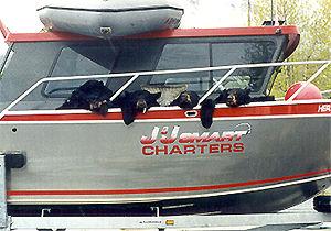 Alaska Bear Hunting by Boat